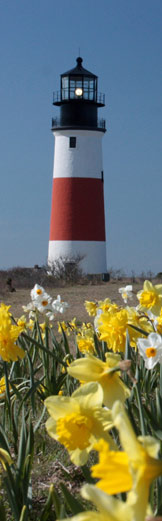 Sankaty Lighthouse in April after Historic Move