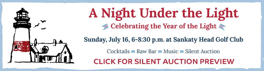 Night Under the Light 2017 Silent Auction Preview